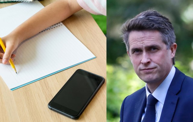 "Mr Williamson said mobile phone distract from ""exercise and good old-fashioned play"" (Photo: Shutterstock/Getty Images)"