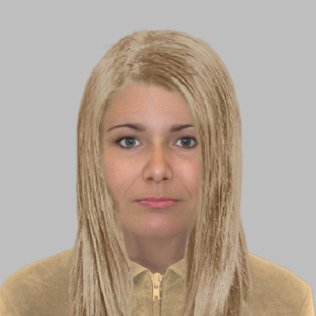 Police have released this e-fit of a woman they are looking for