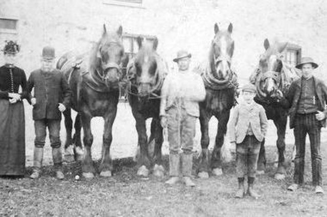 The Squince family at Foggy Furze Farm in the 1890s. Their descendants went on to have a large market garden and florist's shop, Layton's at Foggy Furze. Photo: Roger Stubbs.