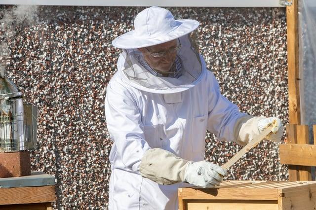 John Woods tending the bees.