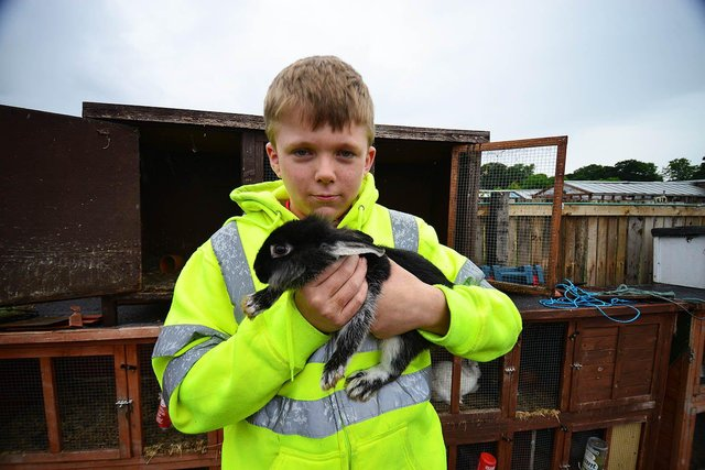John Hayes, 13, with one of his rabbits. Picture by FRANK REID