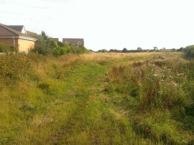 Land behind Nelson Lane, which is earmarked for 50 new homes