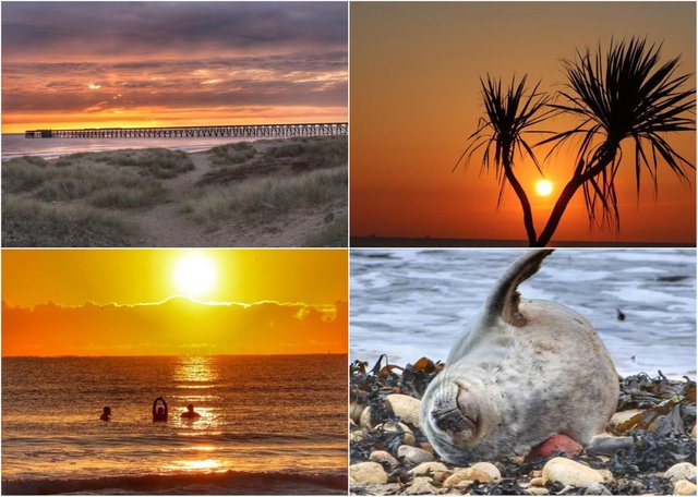 Just some of Lee Bullivant's brilliant pictures taken around Hartlepool recently.