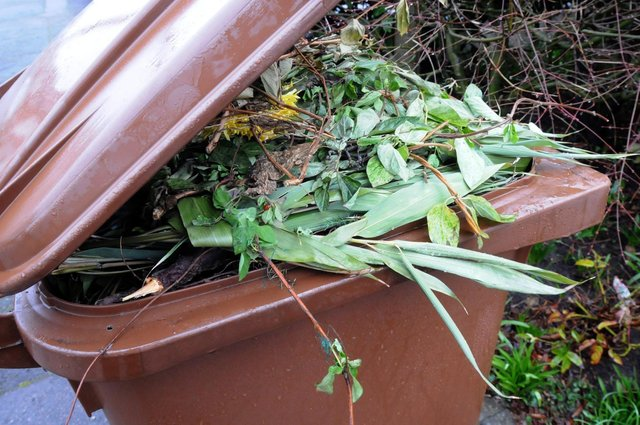 Brown bins are for compostable household garden waste.