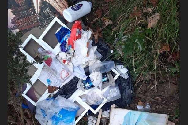 Some of the rubbish dumped at Horden