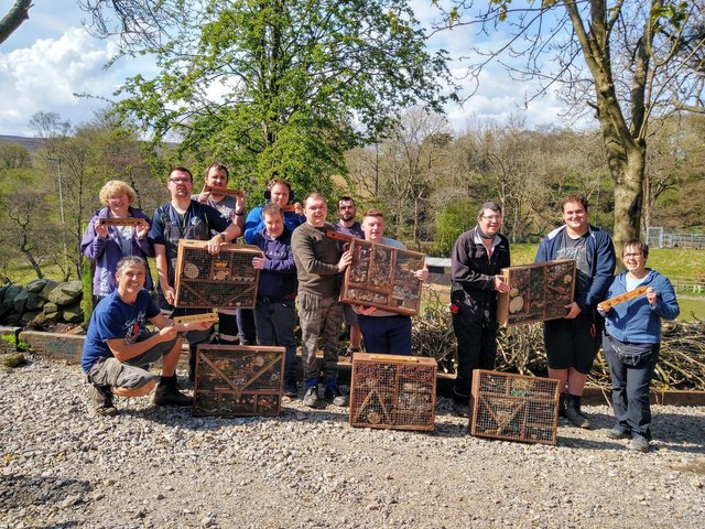 The team with their bug hotels